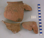 Pot, fragments