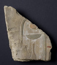Bas-relief, fragment, Cartouche