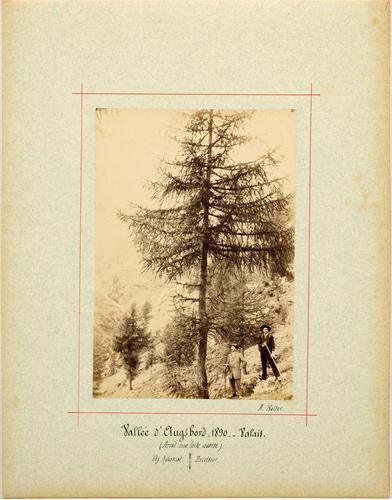 Vallée d'Augstbord