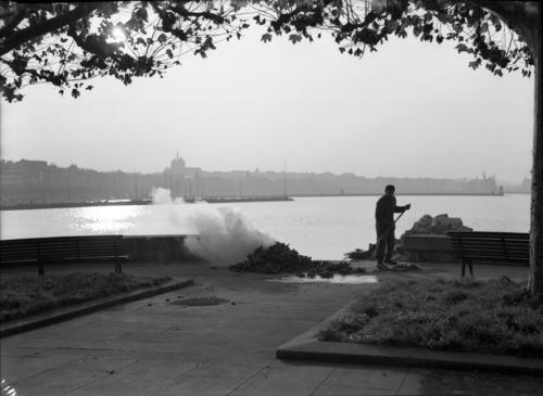 Genève, quai Gustave-Ador: débarcadère (un employé de la voirie brûle des feuilles mortes)