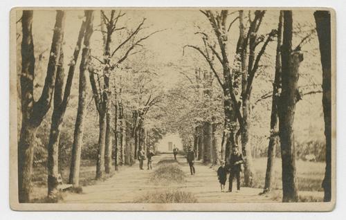 Ain, Ferney-Voltaire: avenue de Voltaire
