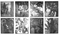 Vignette 5 - Titre : La nature
