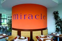 Vignette 2 - Titre : Miracle