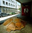 Vignette 5 - Titre : La tortue