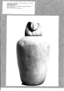 Canope (falsification ?), Canope de Mnévis (panse)