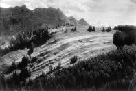 Vignette 2 - Titre : Paysage [près de Gais, canton d'Appenzell]