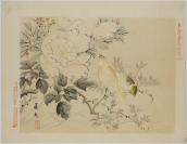 Aoki Kōsanro, éditeur, Matsumoto Keibun 松本 景文