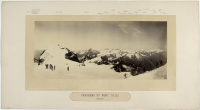 Adolphe Braun (Besançon, 13/06/1812 — Dornach, 31/12/1877), photographe