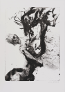 Schweizerische Graphische Gesellschaft, éditeur, Nik Hausmann, Séprais, imprimeur, Martin Disler (Seewen, 1949 — Genève, 1996)