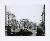 Nicolas Crispini (08/05/1961), photographe