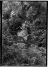 Victor Bérard (Morez, 10.08.1864 — Paris, 13.11.1931), commanditaire, François Frédéric dit Fred Boissonnas (Genève, 18/06/1858 — Genève, 17/10/1946), photographe