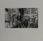 Atelier Raymond Meyer, Pully, imprimeur, Schweizerische Graphische Gesellschaft, éditeur, Catherine Bolle (Lausanne, 1956), auteur et imprimeur