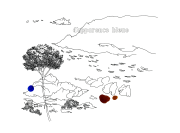 Vignette 3 - Titre : D'apparence bleue [série