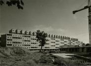 Alfred dit Freddy Bertrand (Genève, 17/04/1906 — Genève, 1984), photographe