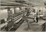 Organisation européenne pour la recherche nucléaire (1954)