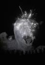 Vignette 1 - Titre : Fireworks (Archives)