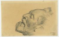 Auguste Baud-Bovy (Genève, 13/02/1848 — Davos, 03/06/1899)