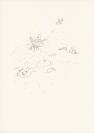 Vignette 5 - Titre : sans titre [série