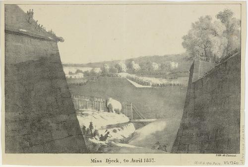 Genève, exécution d'un éléphant dans les fossés de Rive