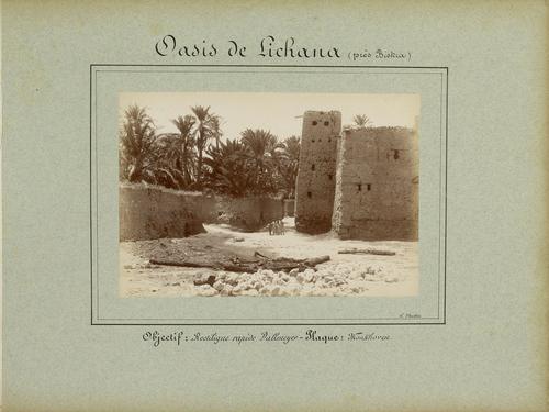 Algérie, l'oasis de Lichana