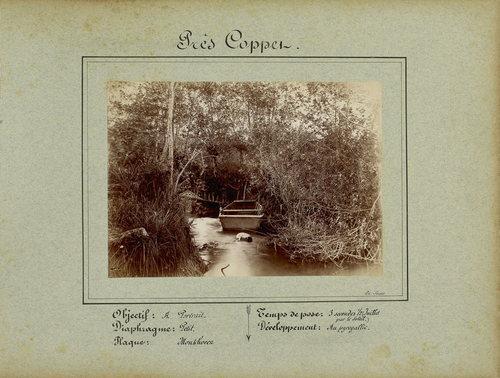 Coppet, rivage