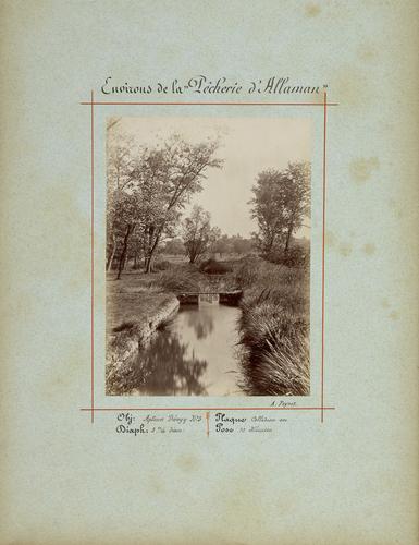 """Allaman: environs de la """"pêcherie"""""""