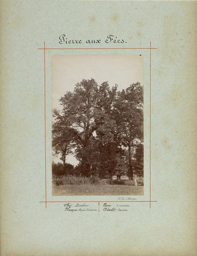 Haute-Savoie, Reignier: la Pierre aux Fées