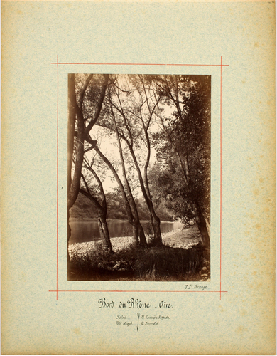 Vernier, bords du Rhône près d'Aïre