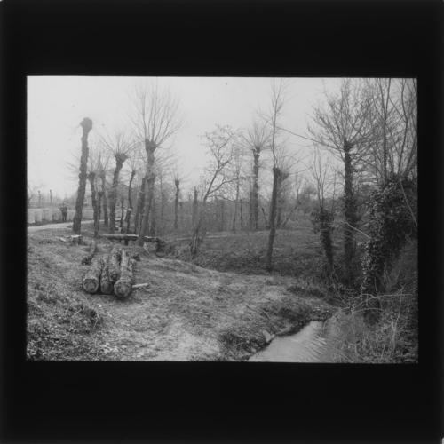 Catnon de Genève, région de Plan-les-Ouates, ruisseau de la Plamatte