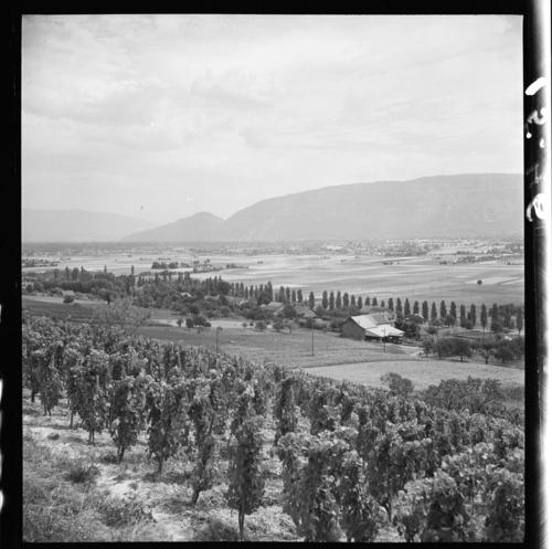 Lully, les vignobles et la plaine de l'Aire