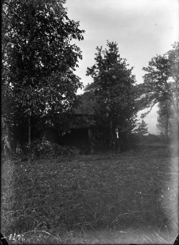 Haute-Savoie, Reignier: dolmen de la Pierre aux Fées