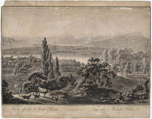Genève et le Mont Blanc, vue de Montbrillant