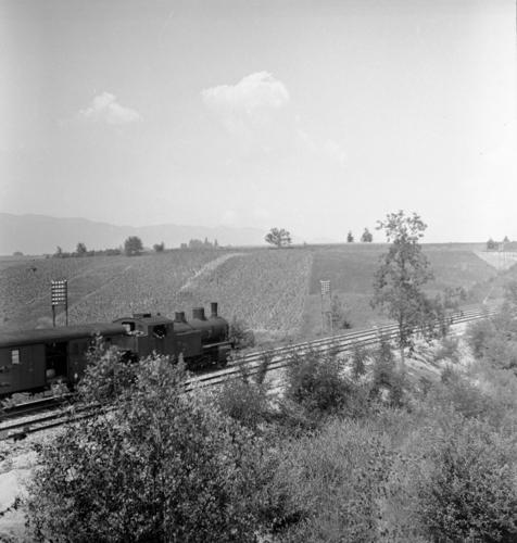 Ligne Lyon-Genève (km 156,5), entre Russin et Satigny