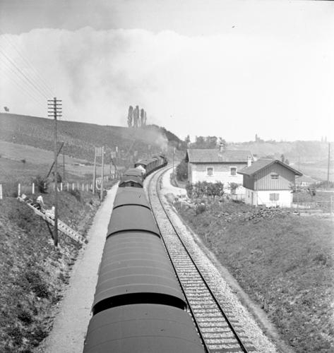 Ligne Lyon-Genève (km 155,7), entre Russin et Satigny.