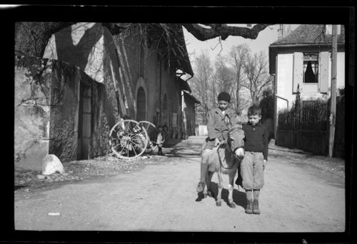 Veyrier, Sierne: enfants avec un âne