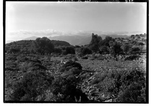 Ithaque, plateau de Marathia