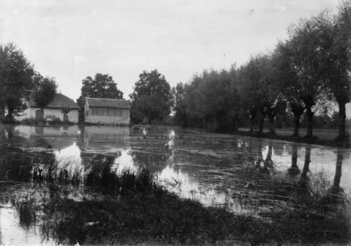 Veyrier, étang des Bossons