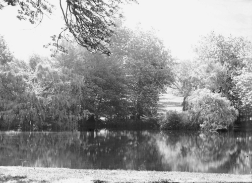 Haute-Savoie, Bossey: étang (au château de?) Crevin