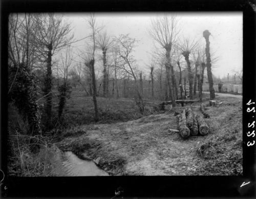 Plan-les-Ouates, ruisseau de la Plamatte